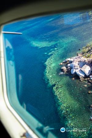 Bleaching between Cairns and Townsville