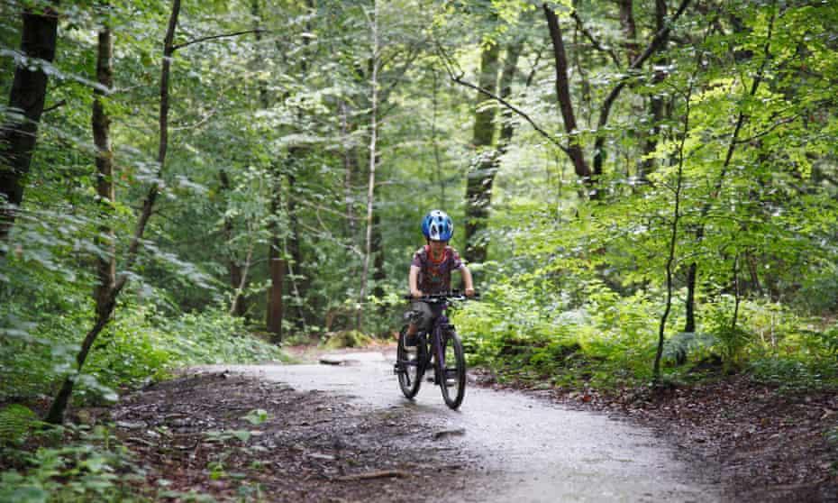 Lanhydrock Woods cycling.