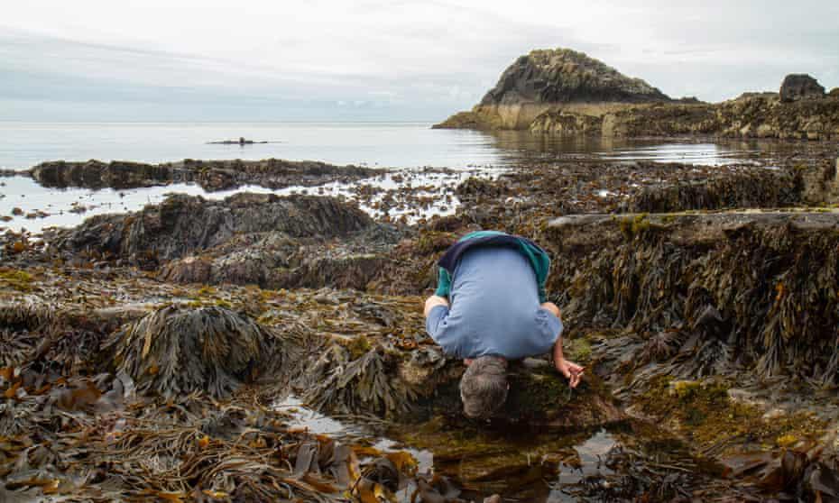 Derek Niemann leans over a rockpool at Scarlett Point on the Isle of Man