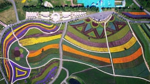 The sea of flowers attract visitors in Harbin, capital of the northeastern Heilongjiang province