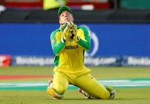 Alex Carey takes a catch to dismiss New Zealand's Ross Taylor.
