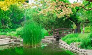 Budapest in bloom … the Japanese Garden on Margaret Island, Budapest, Hungary