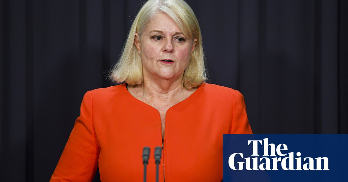 Dual national in Syrian prison launches high court challenge of Australian citizenship loss laws