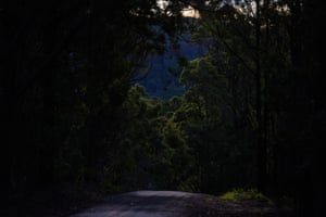 The road out of the farm near Mallacoota in east Gippsland.