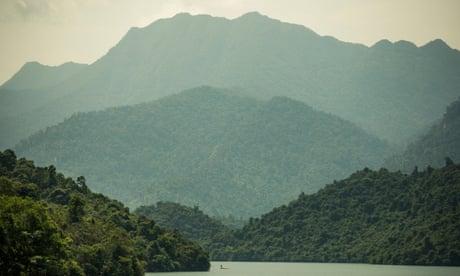 Vietnamese smallholders help end deforestation – photo essay