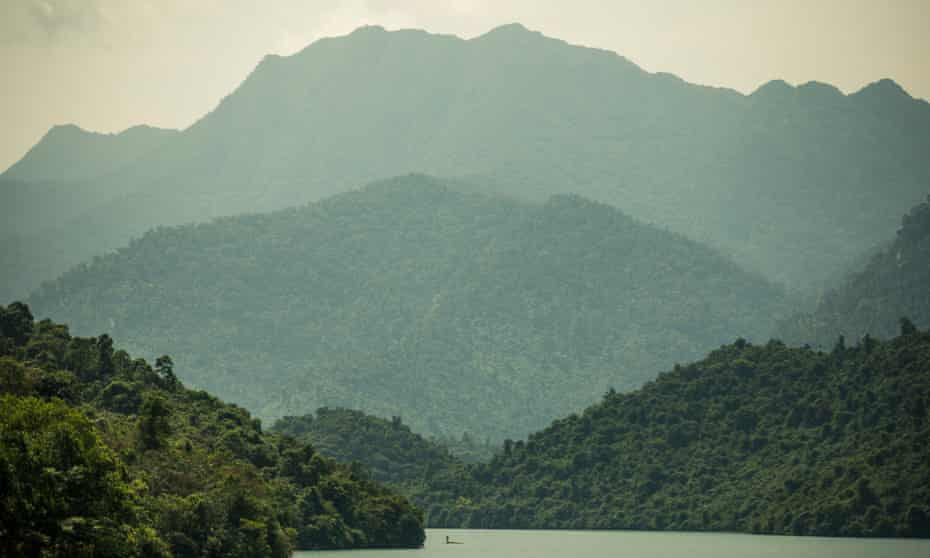 Natural growth forest is separated from plantation land by a buffer zone, Vietnam.