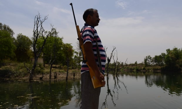 An armed guard at a reservoir in Tikamgarh in the central Indian state of Madhya Pradesh.