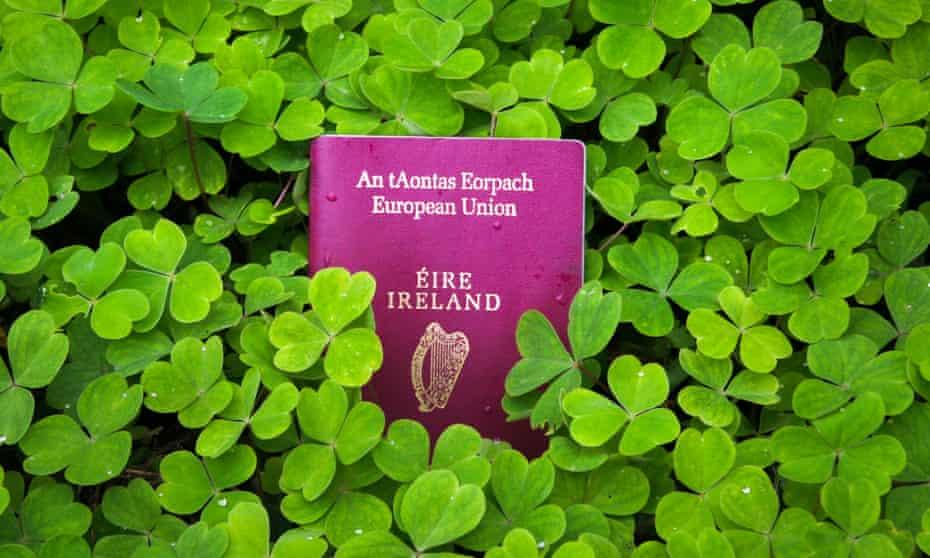Irish passport in a bed of green clover