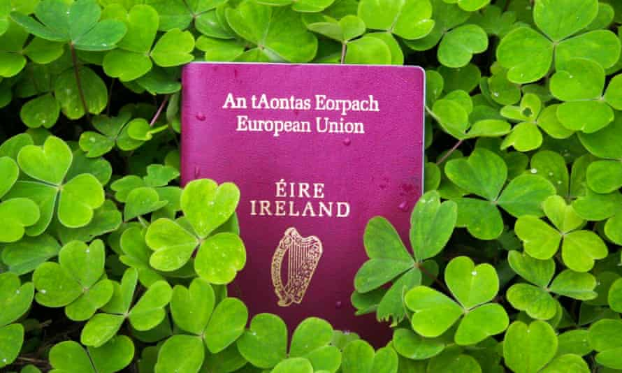 Irish passport in a bed of green clover.