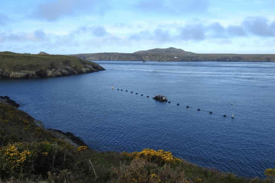 View from the coastal path of one of the trial polyculture farms off the coast of St David's.