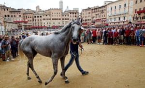 Siena, Italy A horse from the Torre parish is escorted through the crowds