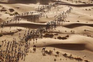Runners in the Marathon de Sables