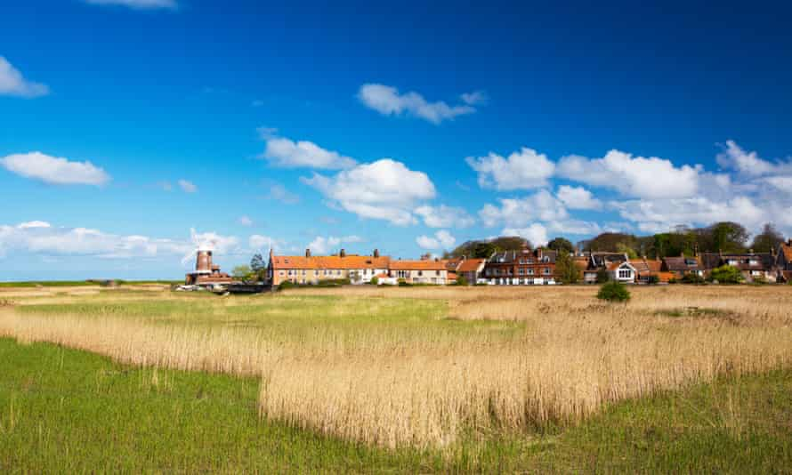 'A great choice for nature and wildlife-lovers': reedbeds at Cley, near Blakeney, Norfolk.