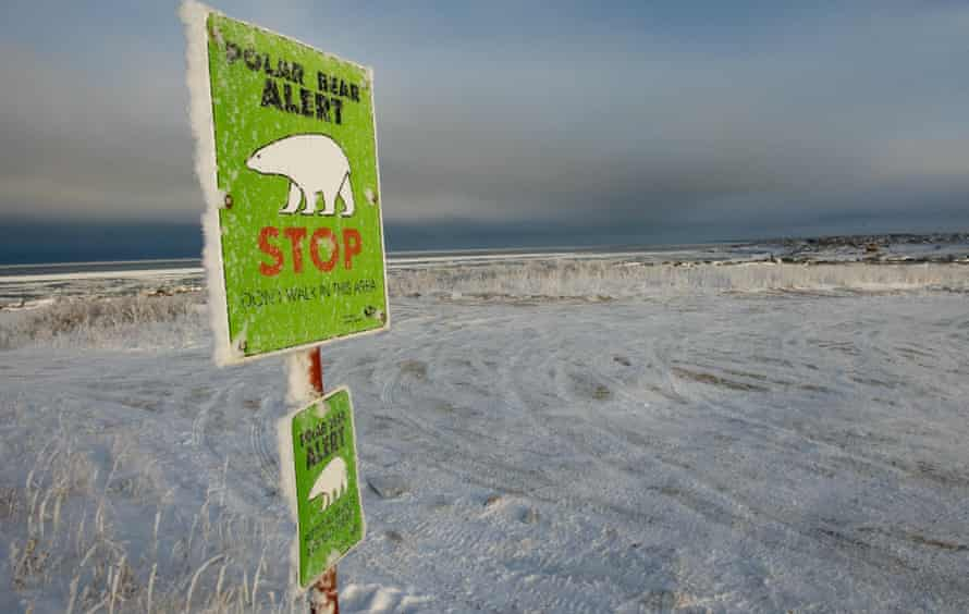 One of many polar bear alert warning signs posted inside the town of Churchill, Manitoba.