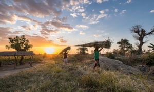 Harvest time in Gumbi, Malawi