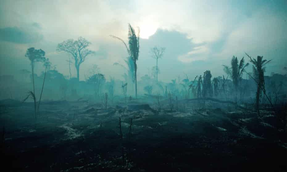 In this picture from 1988, trees burn in the Amazon after a fire started by ranchers in Rondonia state. Critics said Bolsonaro's policies were already damaging the country's international standing.