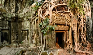 Putting down roots: vast trees take over the temple of Ta Prohm where Tomb Raider was filmed.