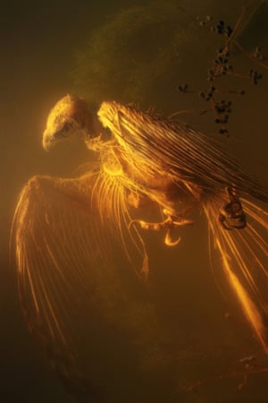 Ghost VultureA photograph from my Memento Mori series - remembering the dead Photograph: bobbyneeladams/GuardianWitness