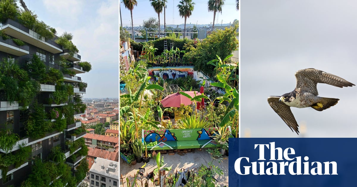 10 great city projects for nature – from vertical forests to a 'gangsta garden'