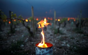 Heaters are lit early in the morning in Chablis