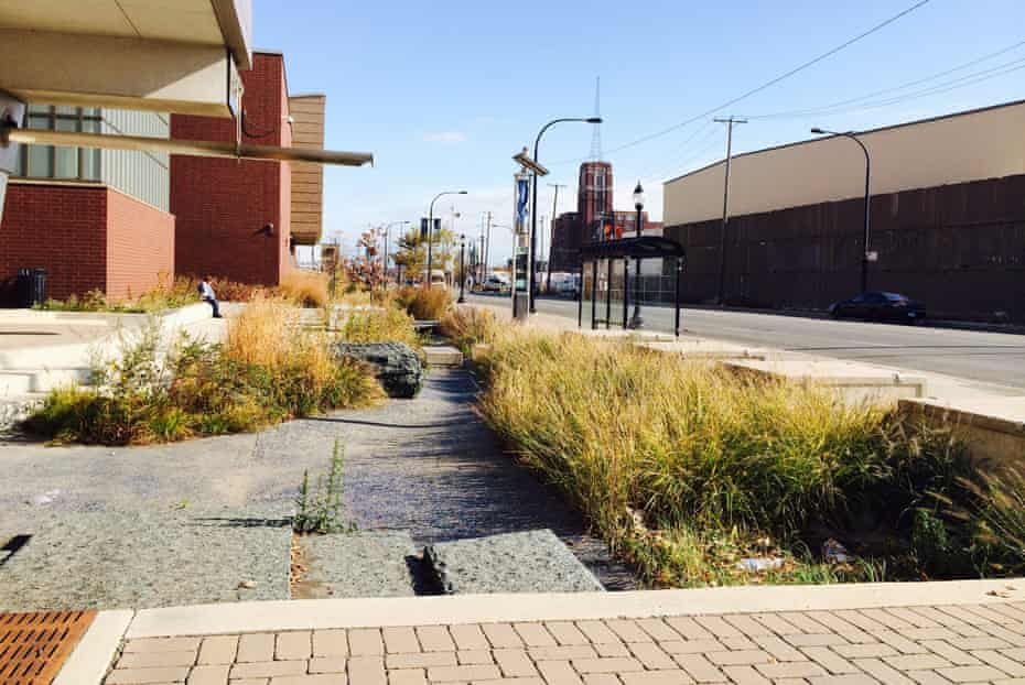 The two-mile Pilsen Sustainable Street, commissioned by the Chicago Department of Transportation to improve the urban ecosystem