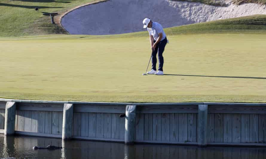 Louis Oosthuizen of South Africa putts on the 17th hole as an alligator swims by.