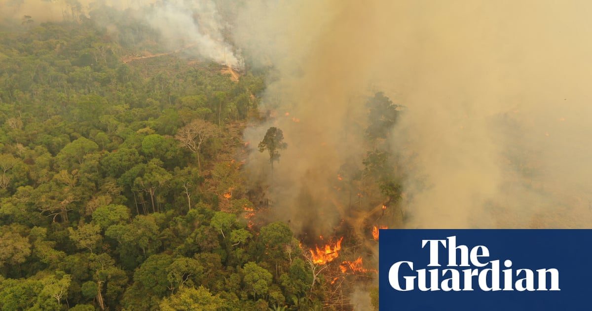 World leaders 'ignoring' role of destruction of nature in causing pandemics