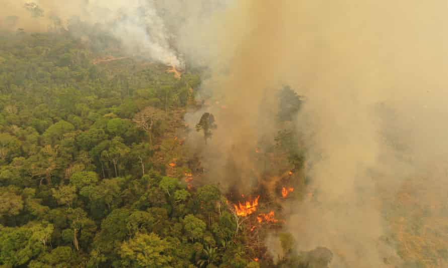 A fire burning in Porto Velho, Brazil, one of the world's oldest and most diverse tropical ecosystems