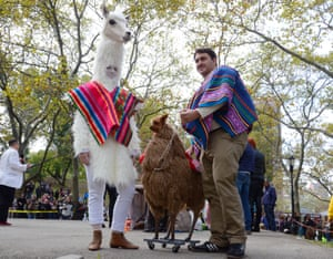 Doggy Llama - the winners, Kari, Alex and Chester. All Photographs: Simon Leigh for the Guardian