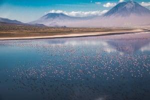 Ankit Kumar, India. Winner, Young TPOTY: 14 and under. Mount Lengai towers next to Lake Natron where flamingos flock to feed. Lake Natron, Tanzania.