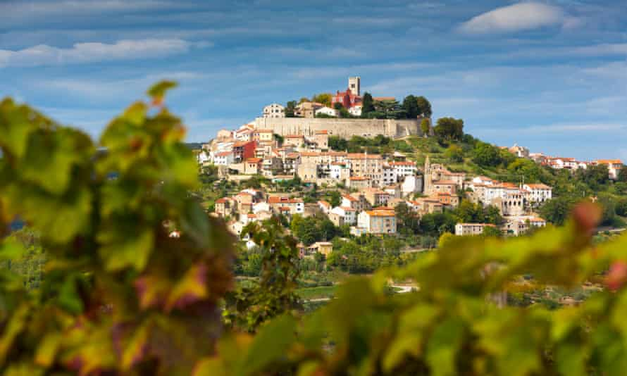 Croatia, Istria, Motovun behind vineyard