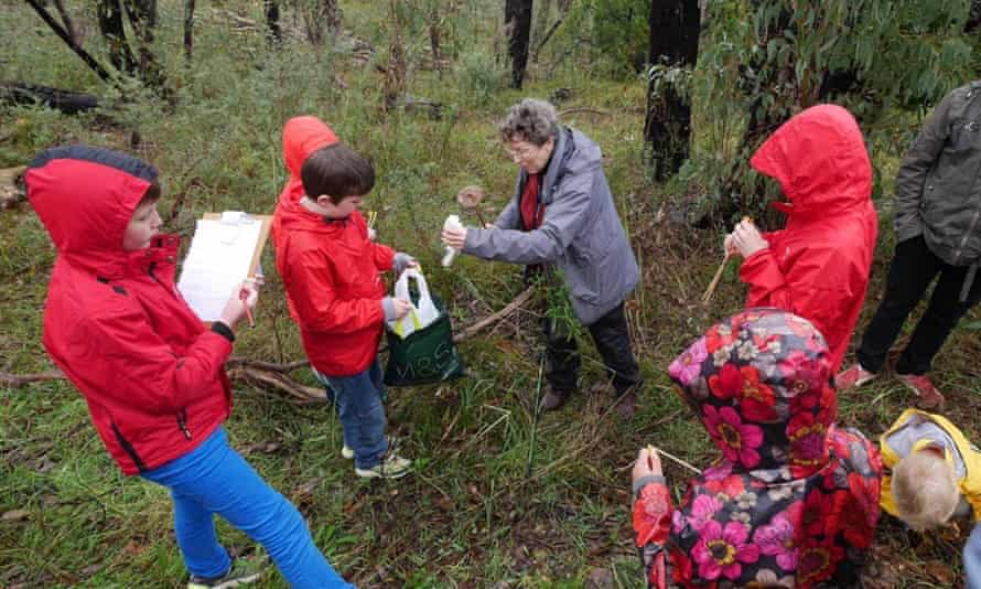Pam Catcheside out and about with Junior Field Naturalists.