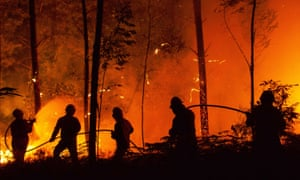 Wildfires in Portugal killed 64 people in June; the recent study explores how often and where similar weather-related disasters are likely to occur in the coming years.
