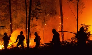 Firefighters attempt to tackle a forest blaze in Pedrógão Grande on Monday.