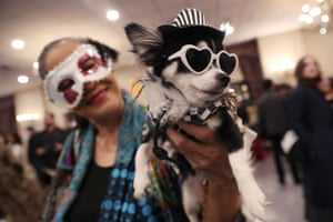 Four catwalk shows took place