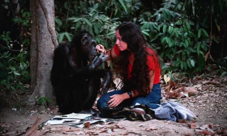 Janis Carter with Lucy the chimp.