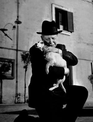 Flike ( a Terrier mix) from Umberto D, 1952