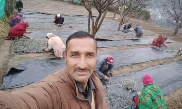 Women arrange lavender on Bhushan plastic sheets while taking selfies