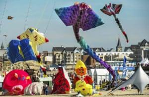 Kites of many colours