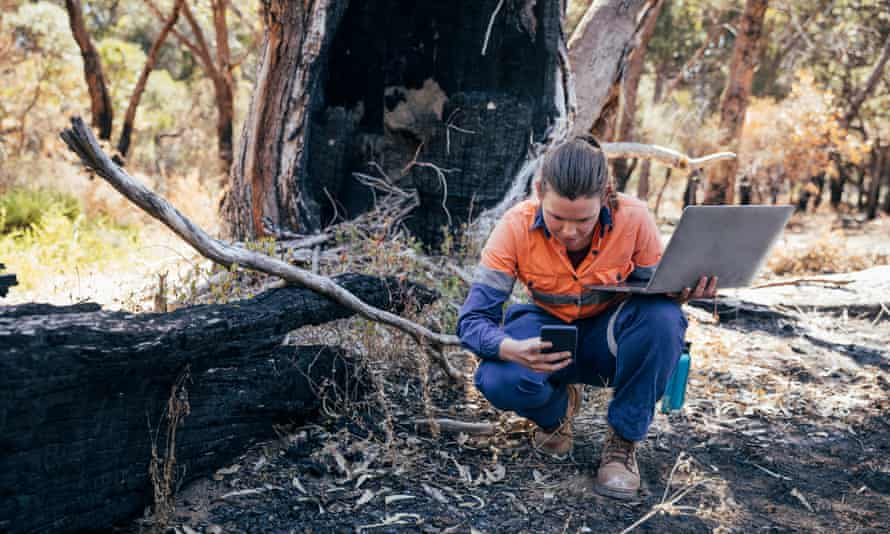 Working Hard to Help Her EnvironmentRockingham Lake regional park.Female scientific environmental conservationist working with the aid of technology to collect data. The Australian Bush has been damaged by fire.