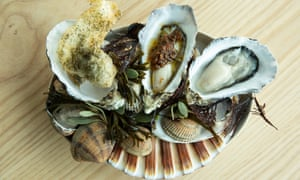 Oysters served on a shell