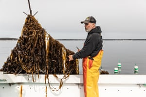 Baines is among 19 veteran lobstermen along the Maine coast who are applying their hard-earned expertise to kelp farming.