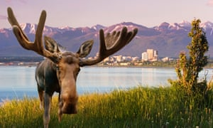 The battle over land rights is complex in Alaska, where the federal and state governments as well as Native groups own vast acreages.