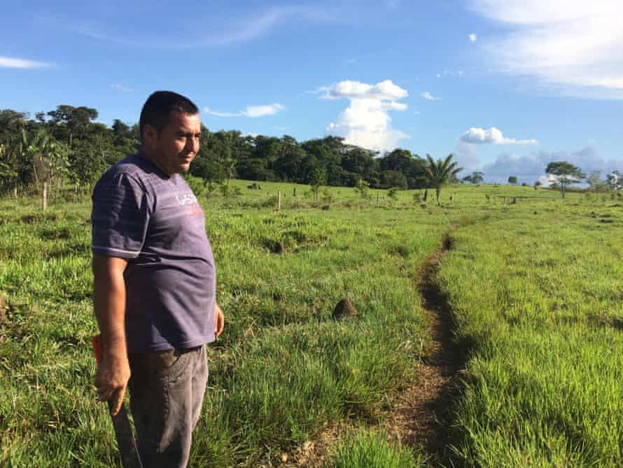 Vergara in his pasture. The termite mounds are evidence of poor soil quality to grow the grasses for cattle, Colombia