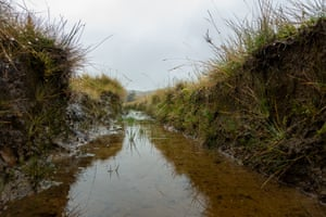 Changes in land management can have significant benefits such as alleviating flooding, sequestering carbon and increasing biodiversity.
