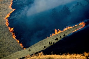 Second prize, environment, singles | Battling the Marsh Fire | Noah Berger, United States