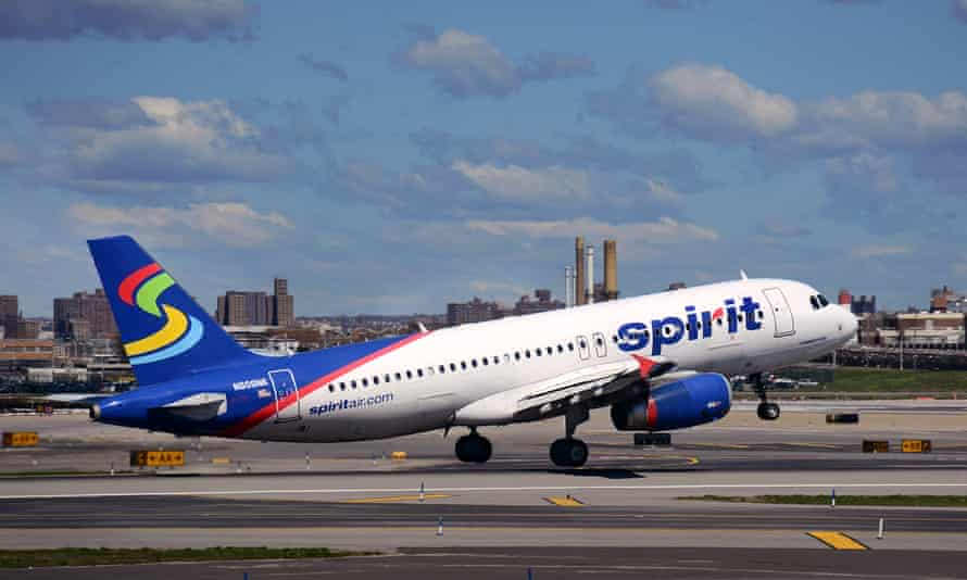 A spokesperson for Spirit Airlines said: 'It is incredibly disheartening to hear this guest reportedly decided to end her own pet's life.'