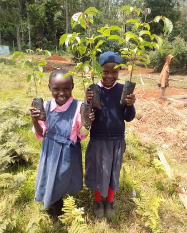 Two young girls carry seedlings in Kenya