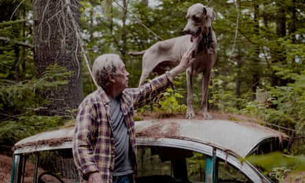 William Wegman reaching up to his Weimaraner which is standing on top of an old car in the woods