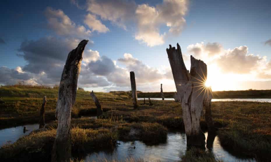 Wild Ken Hill, Norfolk